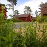 Schwedenrot, Usedom, Insel, Urlaub, Ferienwohnungen, Familienurlaub, Ferien, Kölpinsee, Ostsee